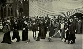 Cat Show at the Crystal Palace in London in 1903