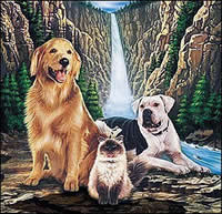 Walt Disney movie animals ~ Homeward Bound