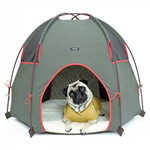 dog pup tent